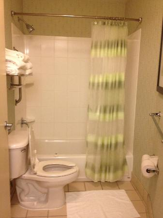 SpringHill Suites Seattle South/Renton: Bathroom