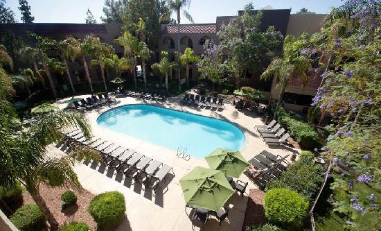 Embassy Suites by Hilton Hotel Phoenix - Tempe: Beautiful Outdoor Pool