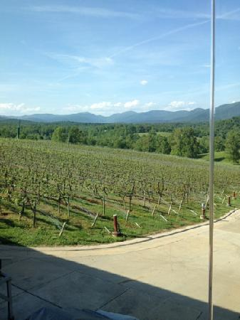 Dahlonega, Georgien: view from the tasting room