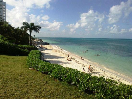 Beach House Imperial Laguna Cancun Hotel: en la noche nos sorprendio esto