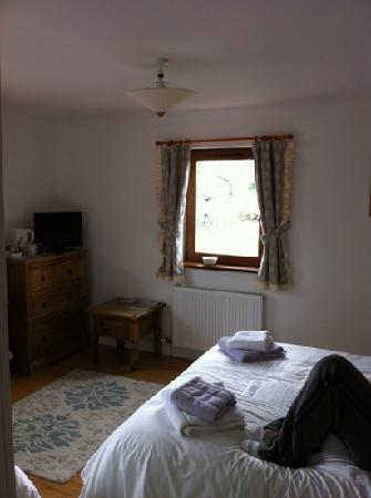 Newton House Bed & Breakfast: spacious room with lots of natural light