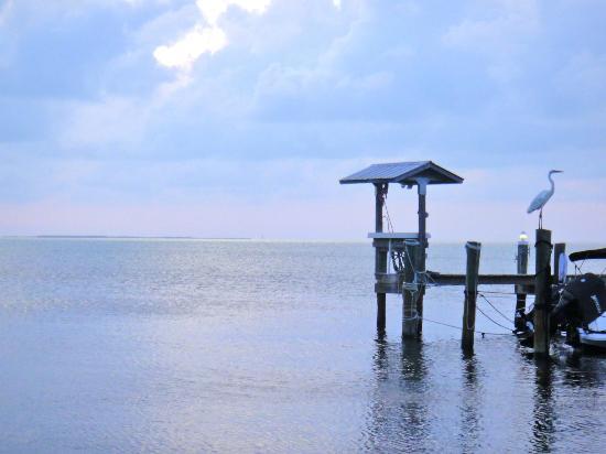 Island Bay Resort: Island Bay beach area at dusk