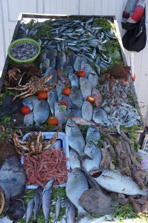 Ryad Lyon-Mogador: Fresh Fish