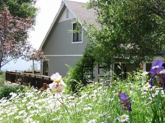 Sierra Mountain Lodge - Yosemite: Flower gardens & gravel pathways surround the lodge.