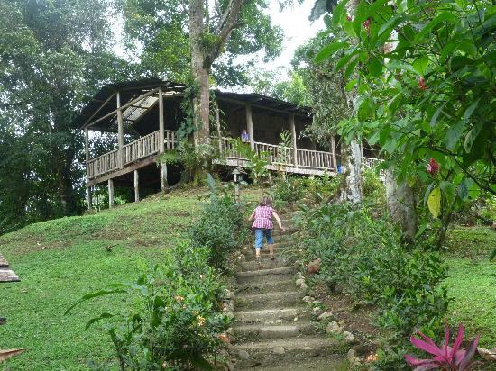 La Carolina Lodge : La cabane familiale sur la colline