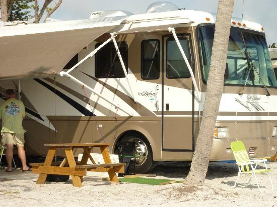 Red Coconut RV Park: the rv