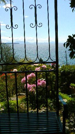 Sea View Vacation Hideaway: Spring has sprung  2012