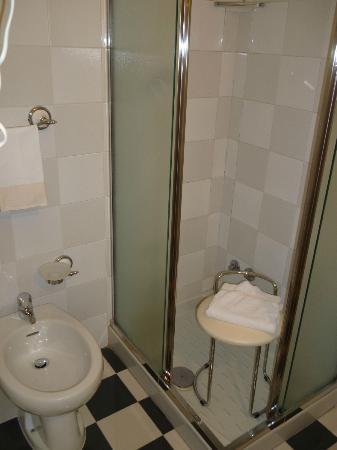 Zanhotel Regina: Bathroom