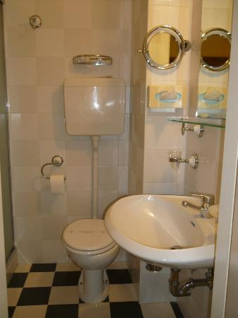 Zanhotel Regina : Bathroom