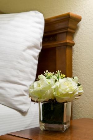 Best Western Poway/San Diego Hotel: Guestroom Decor
