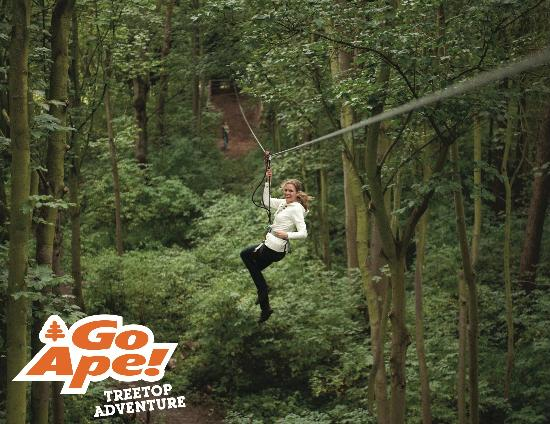 ‪Go Ape Treetop Adventure Course‬