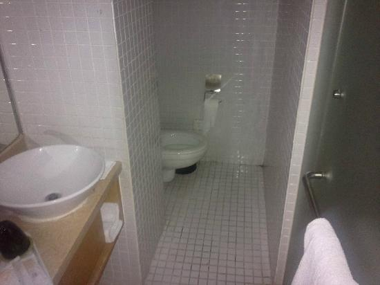 Taiyue Suites Hotel: Туалет