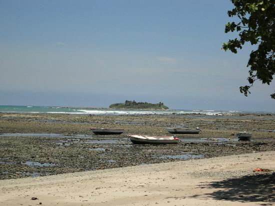 Los Caracoles: Low Tide Cemetery Island