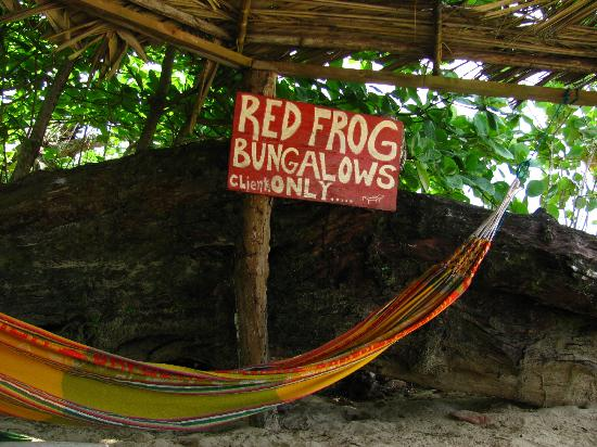 Red Frog Bungalows: R&R
