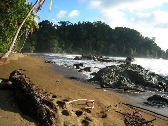 Punta Marenco Lodge: Rio Claro Beach 20  min walk