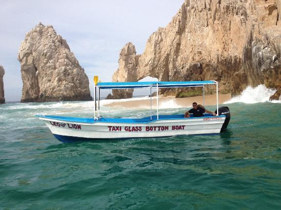 Leo The Lion - Water Tours with Twist - Day Boat Tours