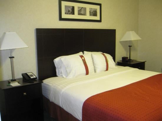 Holiday Inn Rosslyn @ Key Bridge : King suite