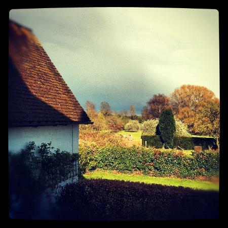 North Moreton House: The view out the back from our bedroom window