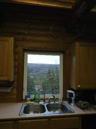 Denali Faith Hill Lodge: View from the kitchen sink