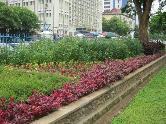 Maha Bandoola Garden: The Edge Of The Garden Beds To The West