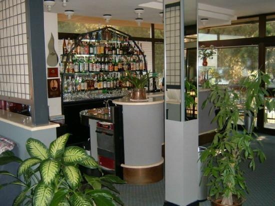 Hotel Granducato: Bar