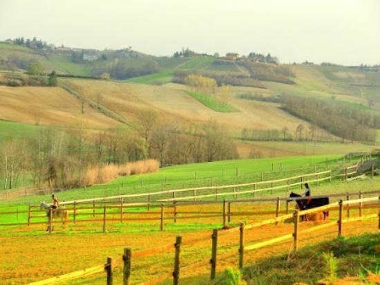 Calliano, Italy: 乗馬散歩