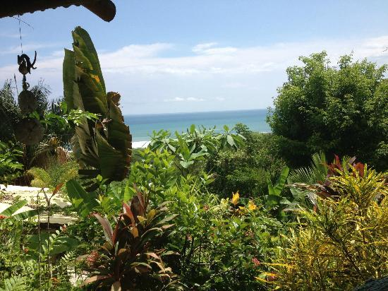 Hotel Buenisimo: Casita View