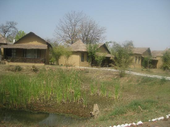 Tiger Lagoon: Hotel View