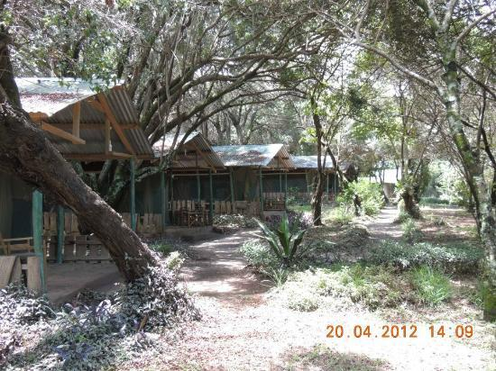 Mara Sidai Camp: Camp