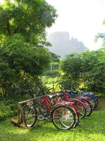 Rohotu Fare: Free bikes to use to see the island