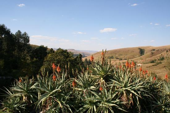 Cavern Drakensberg Resort & Spa: View from hotel grounds