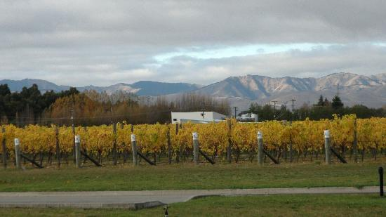 Marlborough Vintners Hotel: view from room 12