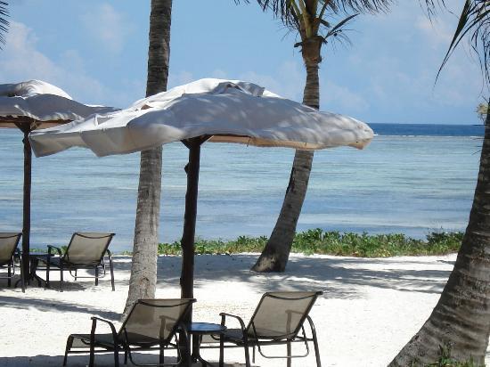 Traveler photos of Baraza Resort and Spa, Zanzibar. Courtesy: TripAdvisor