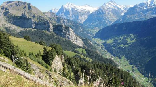 Гриндельвальд, Швейцария: Valle de Grindelwald