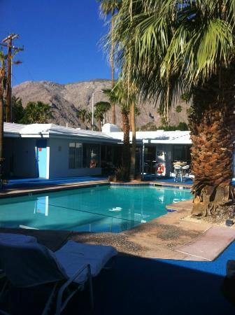 Palm Springs Rendezvous: Piscine