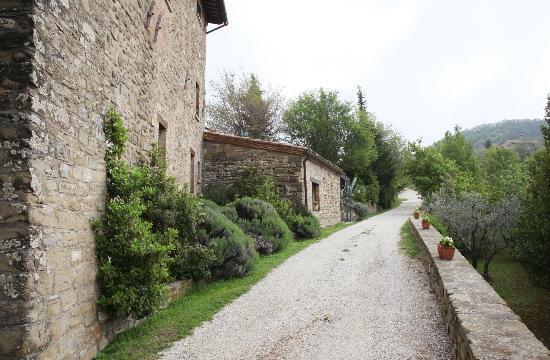 Locanda del Gallo 사진