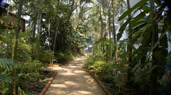 Resort Mellorosa: Garden