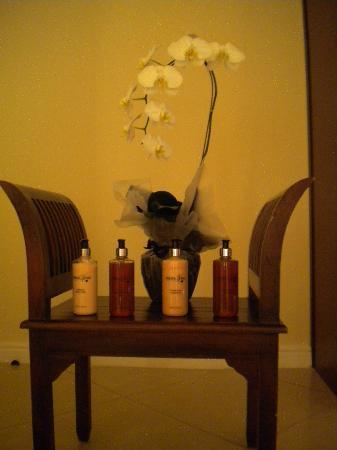 The Country Guesthouse: TheraVine Amenities