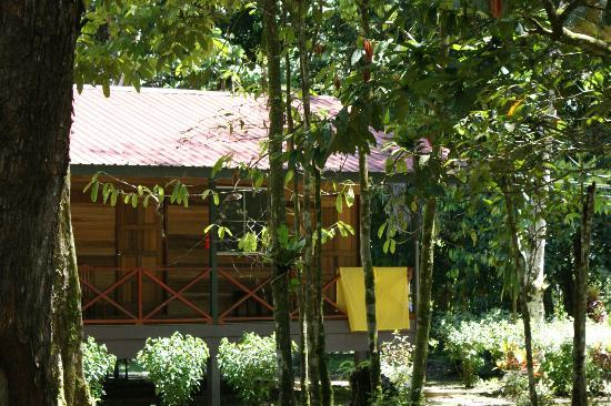Kinabatangan Jungle Camp: The long house where we stayed