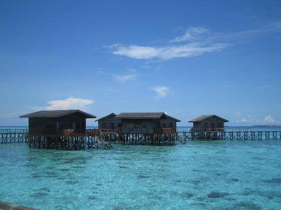 Pom Pom Island Resort & Spa: the water bungalows