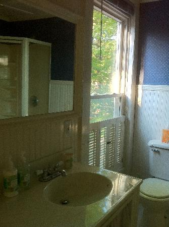 7 Willows Bed & Breakfast: Treetop Room Bath