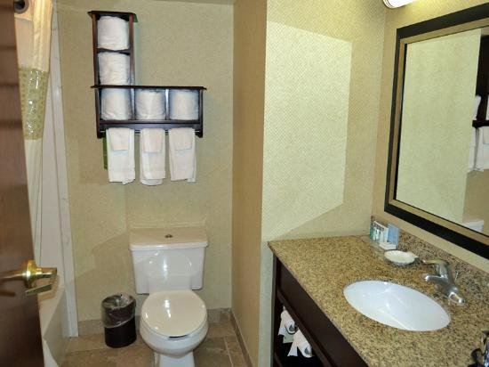 Hampton Inn Newport News-Yorktown: Bathroom with tiny, rough towels.
