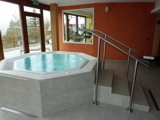 Hotel du Golf: The jacuzzi in the Spa