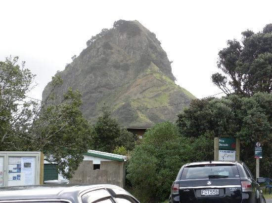 Orewa Motor Lodge : Orewa View