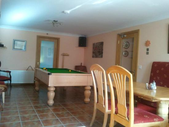 The Laurels Bed & Breakfast Lodge: Pool table