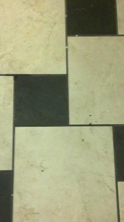 Holiday Inn Express & Suites Tulsa South/Bixby: This is the bathroom floor after being cleaned. Those black spots are mud