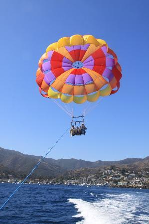 Best Hotels In Catalina