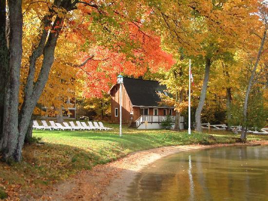Shamrock Lodge: Fall colours