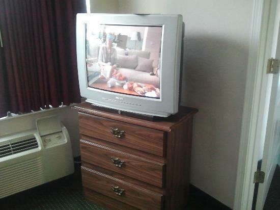 Ft. Myers Extended Stay Hotel: Living room TV and furniture