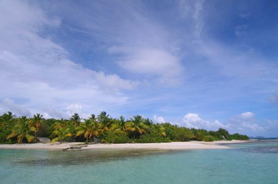 Surfsong Villa Resort : WellBay Beach along the shore from Surfsong